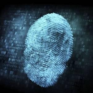 手指里的黑科技 浅析手机指纹识别技术的发展趋势