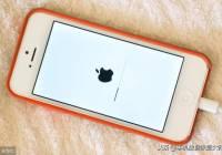 你的iPhone或许要被淘汰!苹果iOS 13或不再覆盖这些机型!