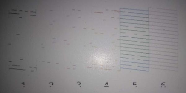 爱普生干式打印机色彩异常维修 图6
